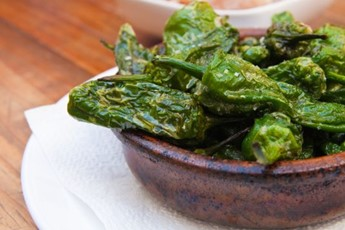 recipes food views blistered padron peppers