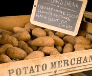 Hurrah for heritage potatoes!