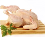 Food bug found in nearly three-quarters of supermarket chicken